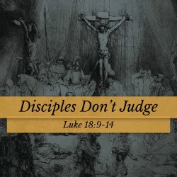 Disciples Don't Judge
