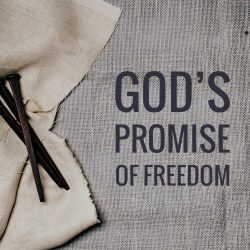 God's Promise of Freedom